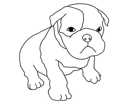 Pitbull Puppy coloring, Download Pitbull Puppy coloring